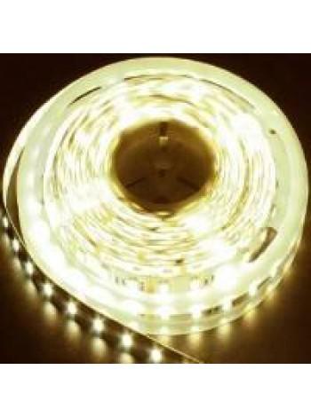 Светодиодная лента LS606/ 30SMD(5050)/m 7.2W/m 12V 5000 *10*0.22mm белый теплый IP20 27643 Feron